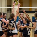 Ledyard Volleyball Captures First State Title